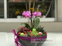 Öğretmenler Günü İçin Anlamlı Çiçek Tasarımları